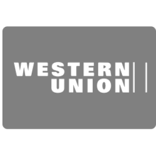 iconfinder_western_union_payment_methods_295706